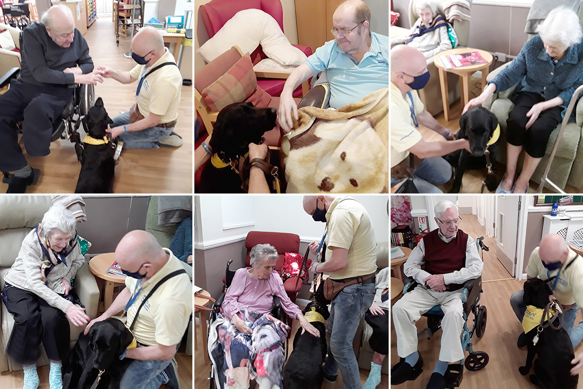 Welcoming back Susie and Steve to Meyer House Care Home
